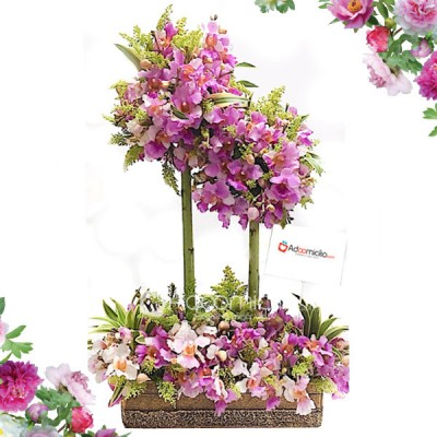 florales Cali Orquideas 2 Pisos Pedidos con 3 dias de anticipados