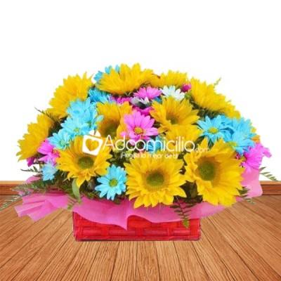 Arreglos Florales A Domicilio En Cali 12 Girasoles Y Margaritas De Colores
