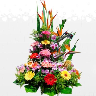 Gerberas Para Ella Arreglos Florales Para El Dia De La Madre A Domicilio En Pereira