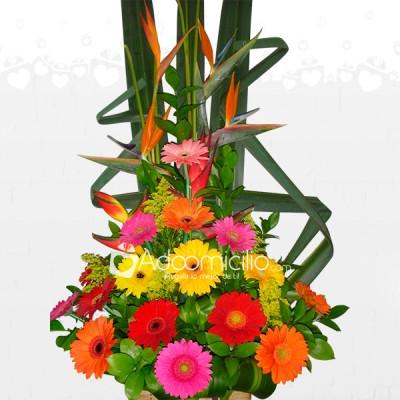 Arreglos Florales Para El Dia De La Madre A Domicilio En Pereira